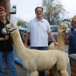 Alpacas & Geographically Desirable